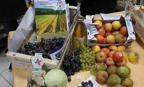 Le bio du Sud-Ouest à l'affiche   Agriculture en Dordogne   Scoop.it