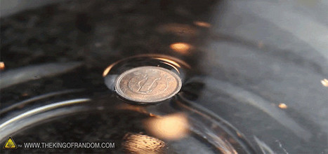 How to Make Metal Coins Magically Float on Water | News we like | Scoop.it