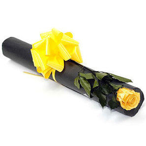 Preserved yellow rose | Flowers for delivery in United Kingdom | Scoop.it