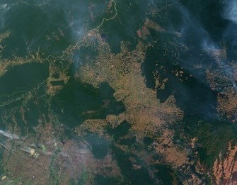 Forest degradation in Brazil worries experts | Climate - Water - Ecology - People and Sustainability post Rio+20 | Scoop.it
