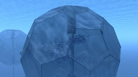 The Fish Matrix is real: this gigantic deep ocean sphere will raise 1,000 tons of tuna | leapmind | Scoop.it