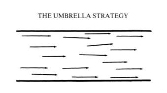 Moving toward emergent strategy: slowly, if at all — Gigaom Research   Stratégie et vivacité organisationnelle   Scoop.it