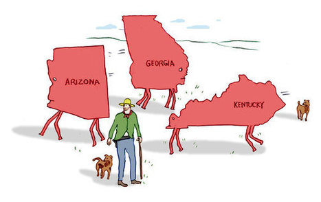 Why Are States So Red and Blue? | Geography Education | Scoop.it