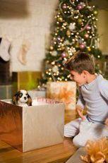 Je ne veux pas être un paquet cadeau à Noël-  Adopter un chien conseils - passions-dog.com le blog | Educateur canin en Alsace - Etoile des bergers | Scoop.it