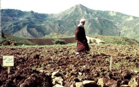 La justice exhume les charniers de la guerre civile algérienne   rehabilitating the Terrorists   Scoop.it