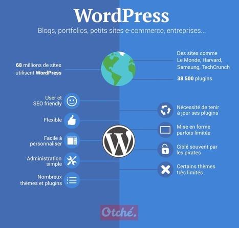 Pourquoi utiliser WordPress ? | Blogs | Scoop.it