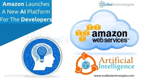 Amazon Launches A New AI Platform For The Developers | Mobile-and-web-application | Scoop.it