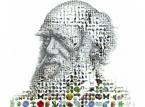 """""""Darwin l'original"""" exposé à la Cité des Sciences   France Inter   Kiosque du monde : A la une   Scoop.it"""