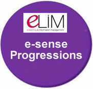 e-sense Somerset materials | elim esafety for Governors | Scoop.it
