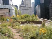 States with a green thumb - Sustainable Industries | Healthy Homes Chicago Initiative | Scoop.it