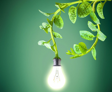 Plant Power: Dutch company harvests electricity from living plants to power streetlights, Wi-Fi, and cell phones | Lateral Thinking Knowledge | Scoop.it