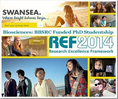 BBSRC Funded PhD Studentship | bioinforamtics | Scoop.it