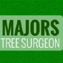 Stump Grinding Services | Majors Tree Surgeon : | The Best Thing To Do I Think | Scoop.it