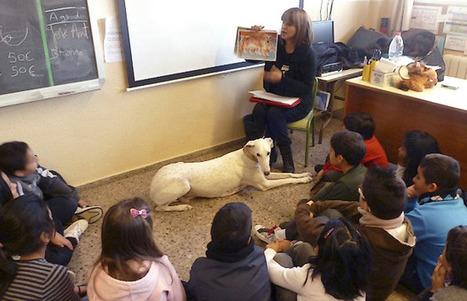 SOS Galgos | Bienestar Animal. Un proyecto educativo de SOS ... | Pablo Galgo | Scoop.it