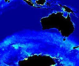 Algorithm finds missing phytoplankton in Southern Ocean | Sustain Our Earth | Scoop.it