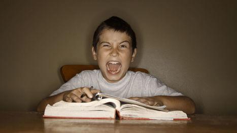 Por qué fracasan los estudiantes en España, según el último informe PISA | La Mejor Educación Pública | Scoop.it