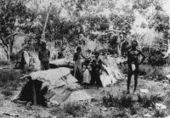Aboriginal Culture - Traditional Life - Housing | Technology: Plant and Animal Use | Scoop.it