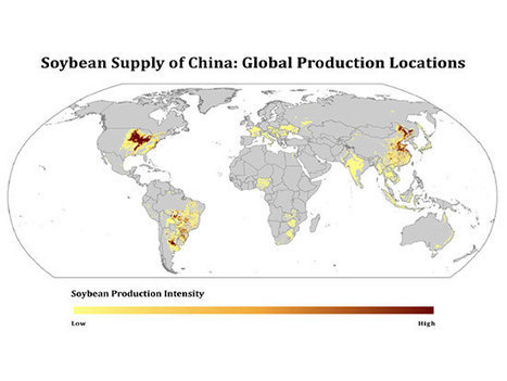 Assessing supply-chain risk through 'commodity mapping' | Supply Chain Risk | Scoop.it