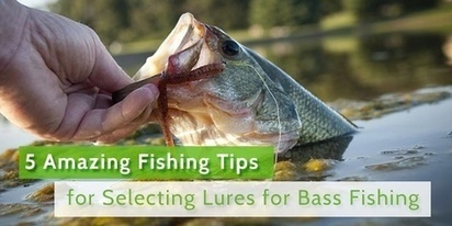 5 Amazing Fishing Tips for Selecting Lures for ... - Fishing Spot App for Amateur Anglers - Quora | Fishing Spot App | Scoop.it