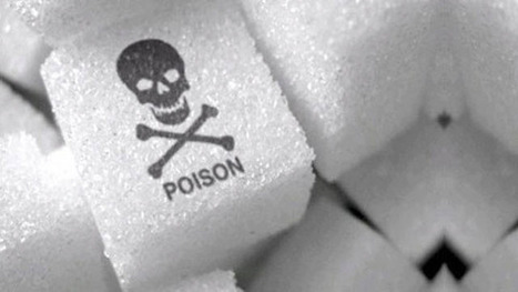 A cukor dilemma - Biorezonancia Mérés | Biorezonancia | Scoop.it