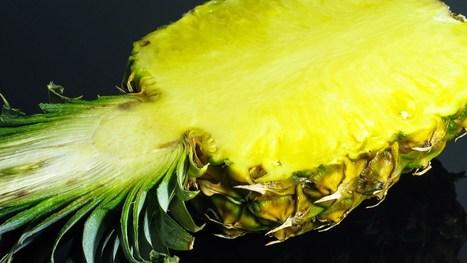 Pineapple Timelapse | Recull diari | Scoop.it