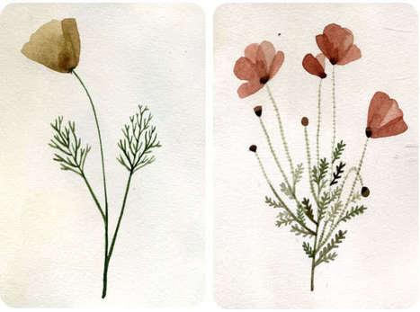 yelena bryksenkova: herbarium | Herbaria | Scoop.it