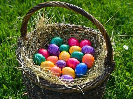 Εξακοντίζουν τα αυγά τη χοληστερίνη στα ύψη; Μύθος ή πραγματικότητα.   Ειδήσεις Υγείας   Scoop.it