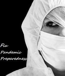 Flu Pandemic Preparedness | The Backyard Pioneer | ApocalypticFiction | Scoop.it