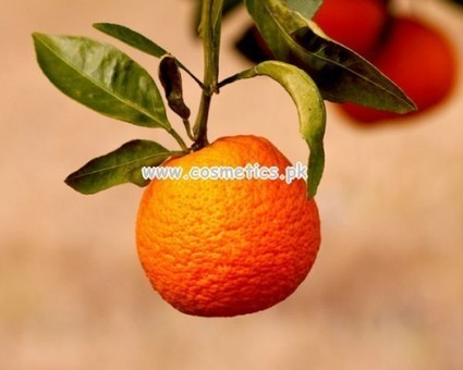 Beauty Recipes With Citrus Fruits For Winter   fashion king   Scoop.it