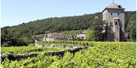 Des fonds publics chinois ont servi à acheter des vignobles en France | Le vin quotidien | Scoop.it
