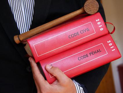 Evènement - 24 intellectuels pour un changement du statut juridique de l'animal | ¨¨Qui est le plus sauvage?¨¨ | Scoop.it