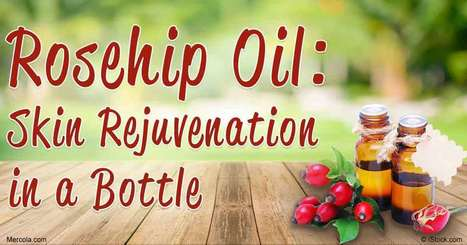 Herbal Oil: Rosehip Oil Benefits and Uses | Raw Edible Organic Skin Care | Scoop.it