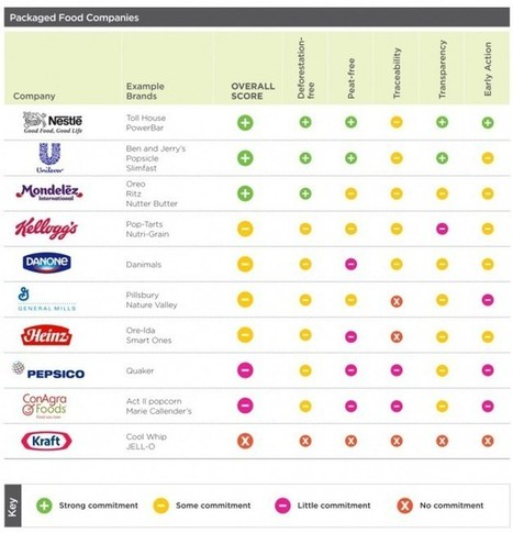 Is Deforestation the Secret Ingredient in Your Favorite Products? - Triple Pundit   CSR   Scoop.it