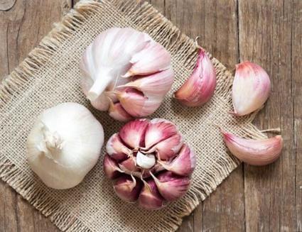 Ail : un aliment anticancer - medisite.fr   Végétarisme, santé et vie   Scoop.it