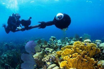Catlin Seaview Survey : les récifs coralliens avec Google Street View - Futura Sciences | Réseaux sociaux | Scoop.it