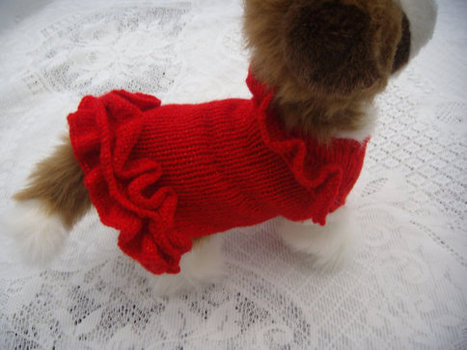 Dog clothes dog sweater ,apparel, chihuahua handknitted red frilled sweater / jumper red dress Frills around the neck and hem line so cute. | dog clothes | Scoop.it