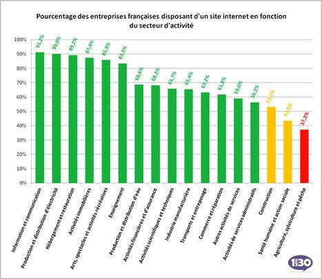 64% des entreprises françaises disposent d'un site Internet   E-marketeur dans tous ses états   Scoop.it