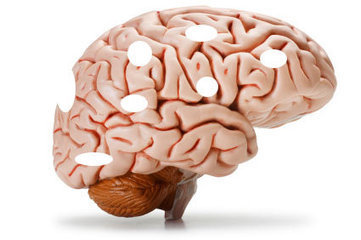 These foods HARM your brain - beware   Life Has A Beautiful Path To The New System   Scoop.it