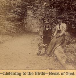 Listening to the birds | DESARTSONNANTS - CRÉATION SONORE ET ENVIRONNEMENT - ENVIRONMENTAL SOUND ART - PAYSAGES ET ECOLOGIE SONORE | Scoop.it