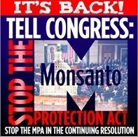 Tell Congress to Stop the Monsanto Protection Act! | Environment! | Scoop.it