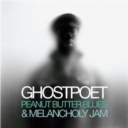 Les CD 2011, la sélection de la Médiathèque de Rillieux-la-Pape | Musique en bibliothèque | Scoop.it
