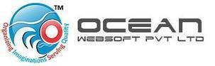 Save Your Money by Hiring Indian Software Development Company | Ocean WebSoft | Scoop.it