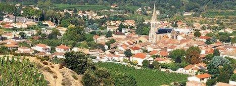 Cornas, ce petit coin d'Ardèche est devenu un grand du Rhône   Le vin quotidien   Scoop.it
