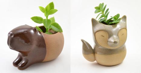 Adorably Tiny Animals Fashioned into Ceramic Succulent Planters | Le It e Amo ✪ | Scoop.it
