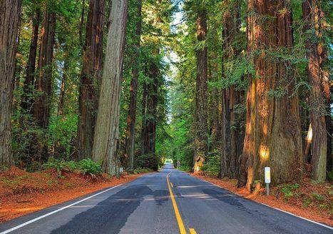 8 road trips to have in California before you die   Healdsburg, California Lifestyle   Scoop.it