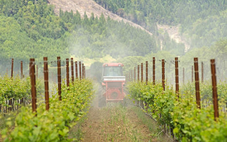 Here's Why Your #Organic #Wine Is Actually Really Bad For The #Environment | Vitabella Wine Daily Gossip | Scoop.it