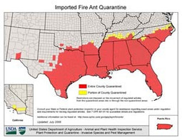 Managing Imported Fire Ants in Urban Areas | All About Ants | Scoop.it