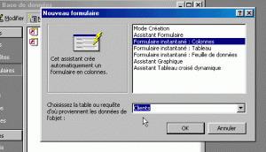 Les Formulaires sous Microsoft Access | Cours Informatique | Scoop.it
