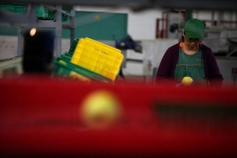 Mexidas no salário mínimo com impacto diminuto no emprego | Deambulações | Scoop.it