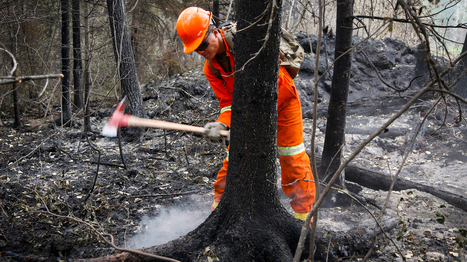 Snowy Canada Endures Drought, Heat, Fires as Planet Gets Warmer | Sustain Our Earth | Scoop.it